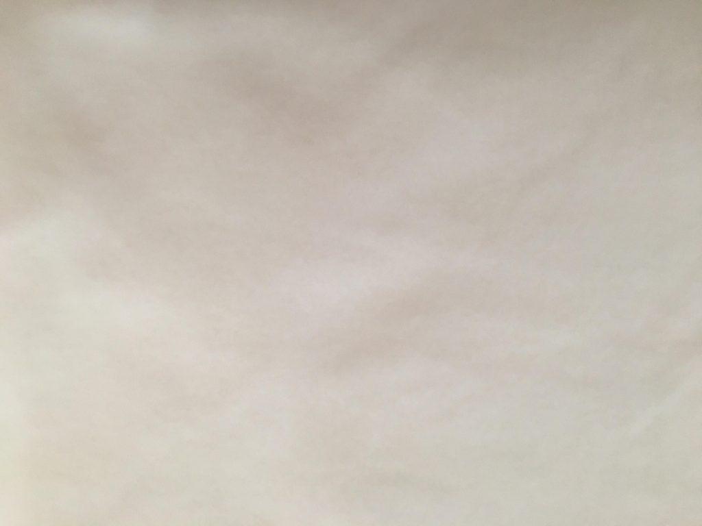 Micro polaire blanc