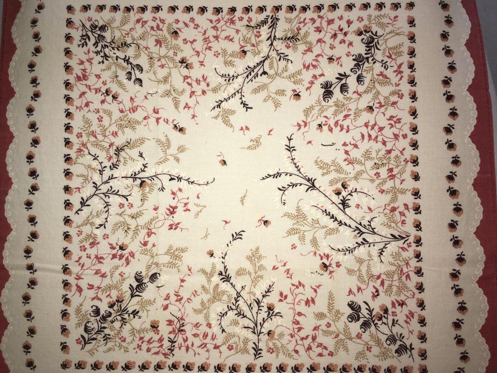 coton blanc végétation 1