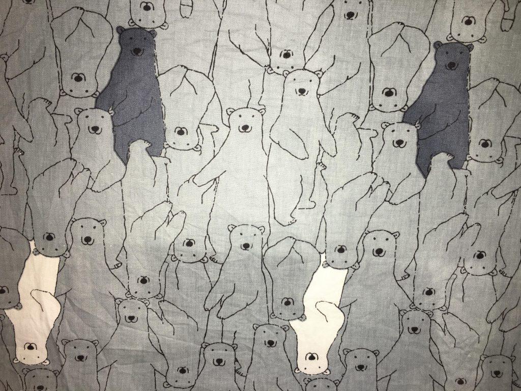 coton gris ours
