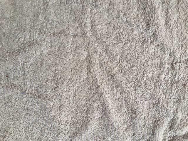 Eponge gris