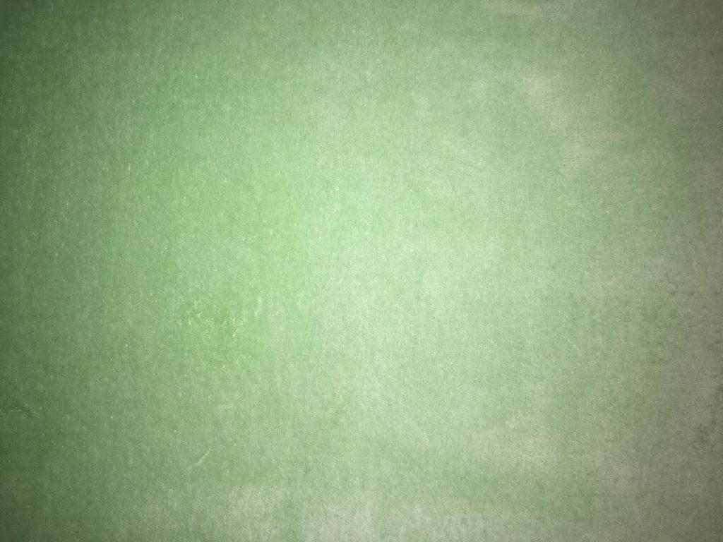 Micro éponge vert pomme